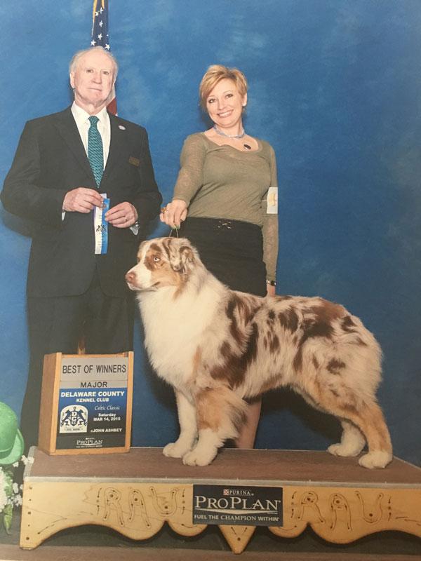 Pet Grooming in Mechanicsburg, Camp Hill, Lemoyne, New Cumberland, and Harrisburg, PA